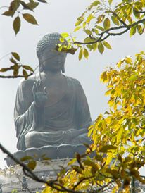 The Big Buddha - largest outdoor sitting buddha in the world - is found on Lantau Island at the Po Lin monastery. Make sure to check out the vegetarian restaurant at the monastery.